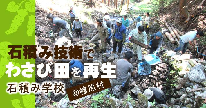 石積み技術でわさび田を再生 石積み学校@檜原村